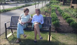 Clare Osdene Shapiro, marketing coordinator for Capital Trees, and Mary Bacon, chief financial officer, share a laugh.